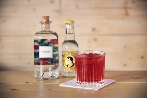 Raspberry Tea Tonic servierfertig