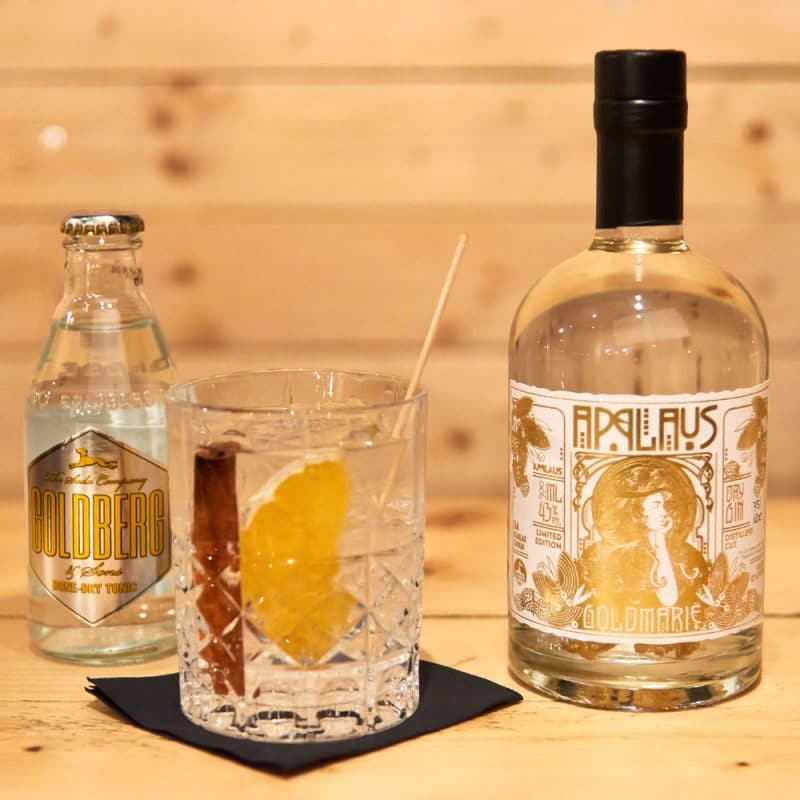 Winter Gin Tonic Cocktail