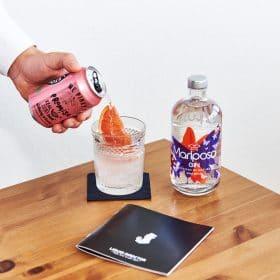 Gin Rhubarb Spritz Zubereitung