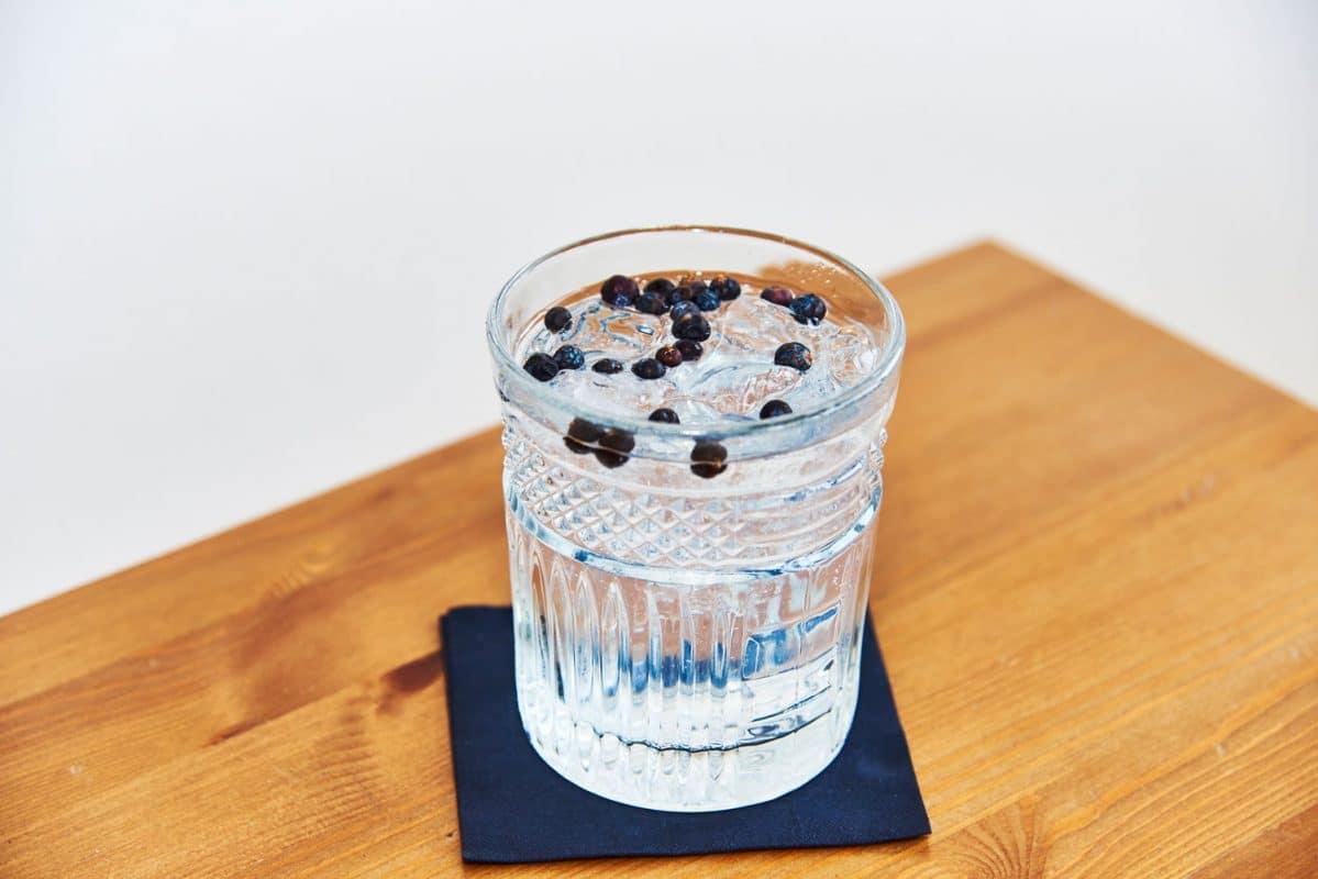 Gin Tonic mit Botanicals