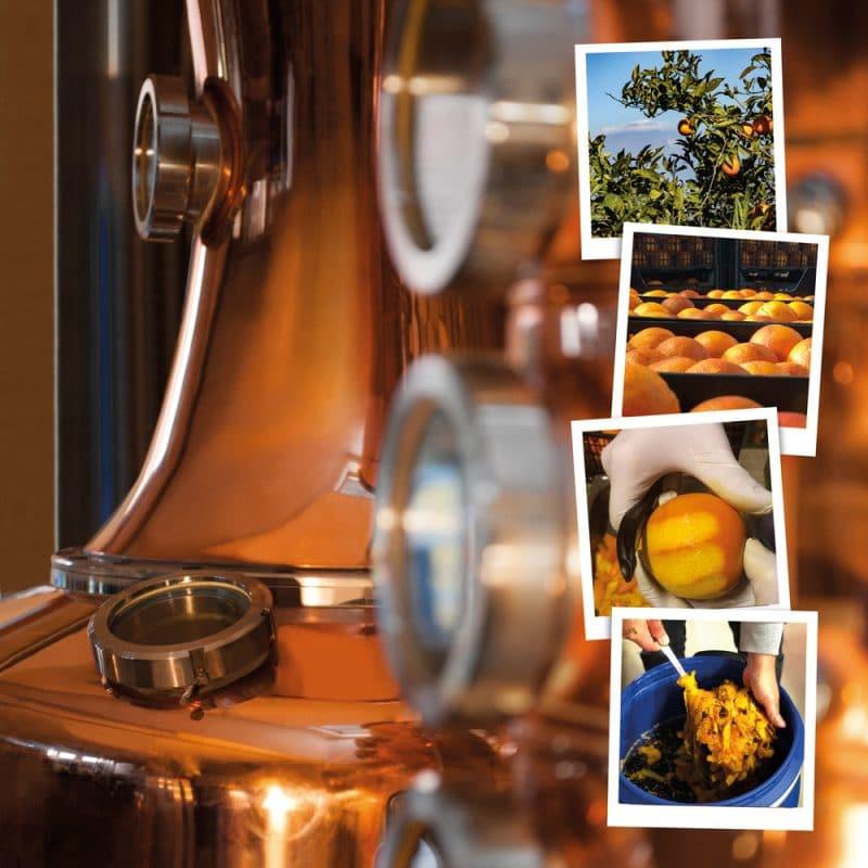 Destillerie des Satoshi Gins
